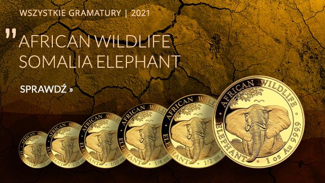 African Wildlife: Słoń Somalijski