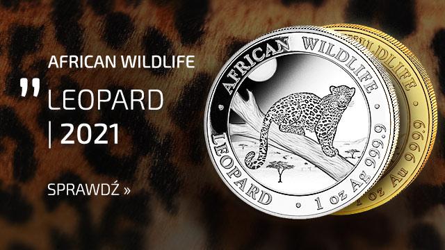 African Wildlife: Leopard 1