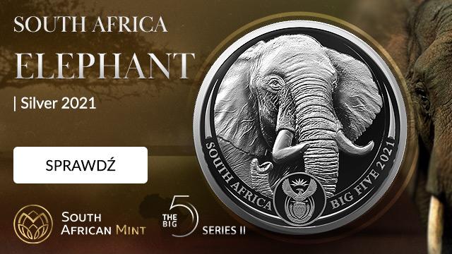Big Five II: African Elephant