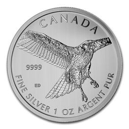 Red Tailed Hawk 1 oz Silver 2015